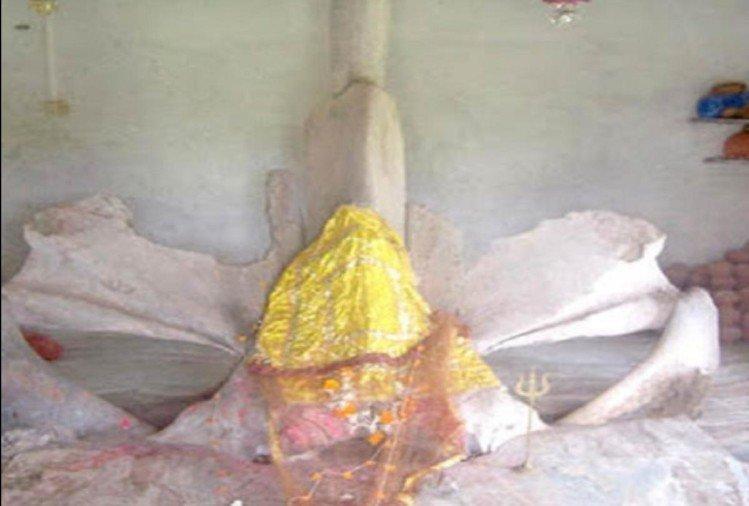 मत्स्य माता मंदिर