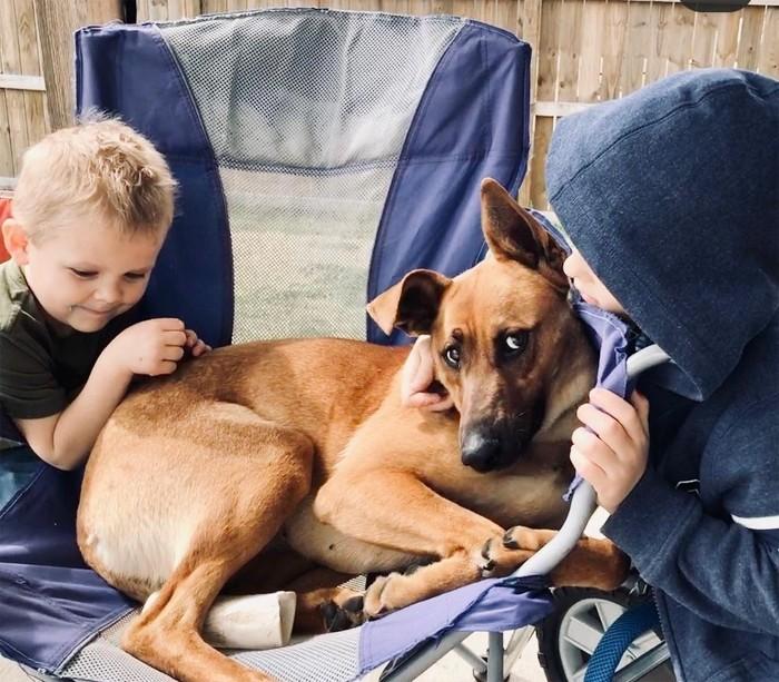 jill-duggar-dillard-feeds-breast-milk-to-pet-dog